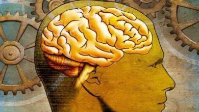 Photo of Të harrosh është shenjë e inteligjencës së lartë, sipas shkencëtarëve